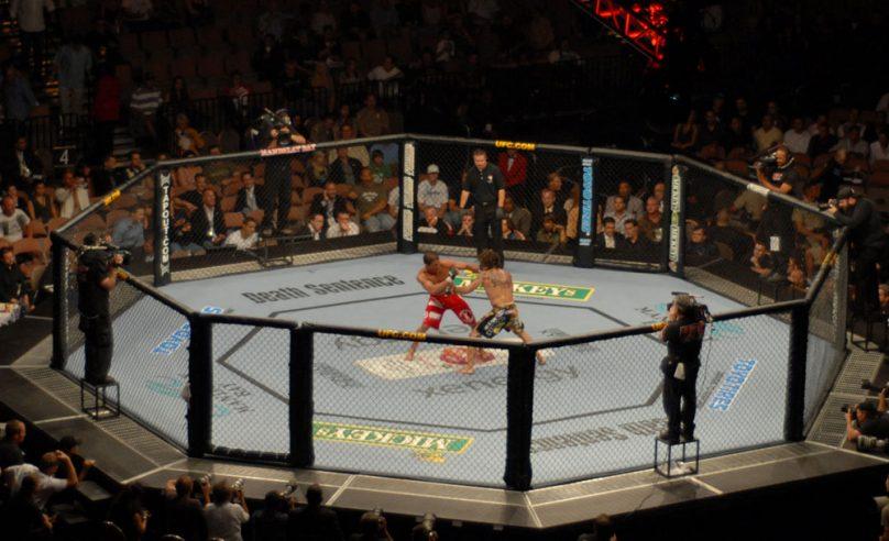 UFC Fight Statistics Datasets